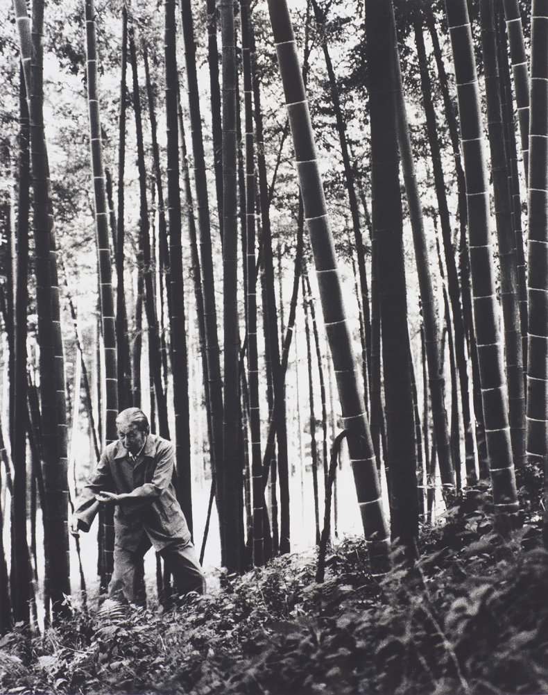 Chua Soo Bin: Truths and Legends