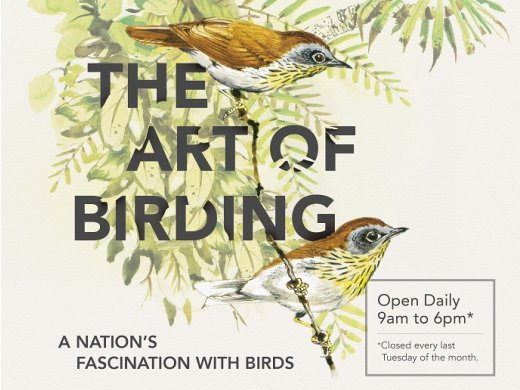 The Art of Birding – A Nation's Fascination with Birds